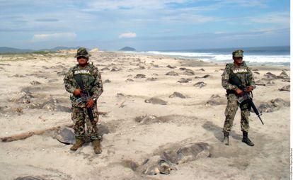 Soldados junto a tortugas en Oaxaca.