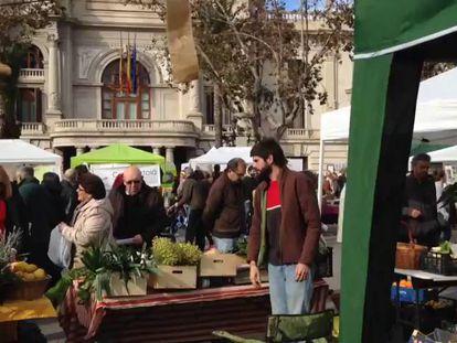 Mercado ecológico frente al Ayuntamiento de Valencia.