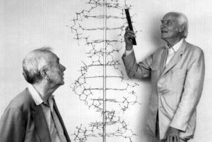 Francis Crick (derecha) y James Watson posan en el laboratorio Cold Spring Harbor.