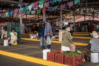 Centro de acopio de nopal en la Alcaldía Milpa Alta de la Ciudad de México, el 23 de abril.