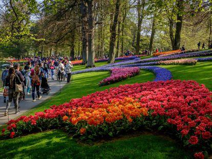 Visitantes en el jardín botánico de Keukenhof, Países Bajos.