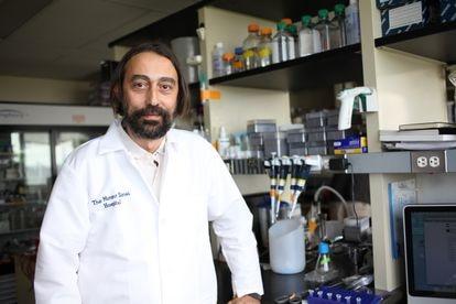 Adolfo García Sastre, virólogo experto en patógenos emergentes del Hospital Monte Sinaí de Nueva York.