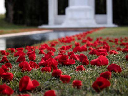 Rosas dejadas como homenaje a los difuntos en un cementerio.