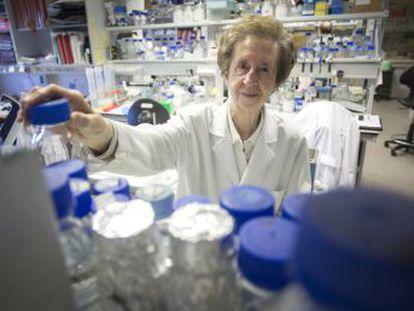 La investigadora inició el desarrollo de la biología molecular y realizó importantes aportaciones sobre cómo funciona el ADN