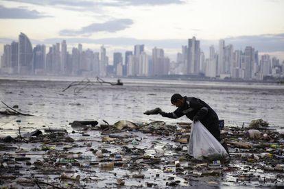 Un activista recoge residuos de plástico en la bahía de Panamá.