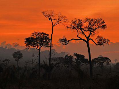 El humo de los incendios intencionados impregna el aire del atardecer en la Amazonia.