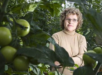 Lola Gómez Ferrón, gerente de Clisol Agro, en uno de sus invernaderos.