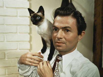 James Mason, el protagonista de 'Lolita' (Stanley Kubrick, 1962), posa con un gato siamés.