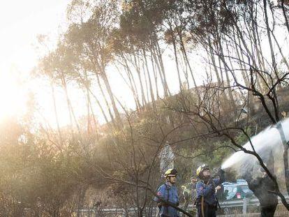 Dos bomberos acaban con las últimas llamas