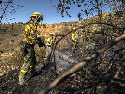 Miembros del Infoca controlan un incendio en Málaga.