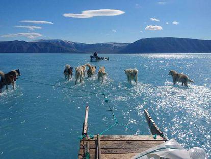 Fiordo de Inglefield Bredning, en Groenlandia, donde se registra una importante pérdido de la capa de hielo.