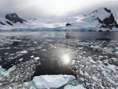 Bahía Orne Harbour, península antártica.
