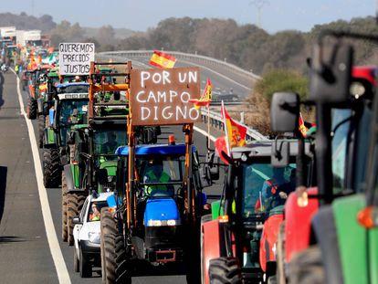 Varios agricultores tratan de cortar una carretera a la altura de Navalmoral de la Mata (Cáceres)