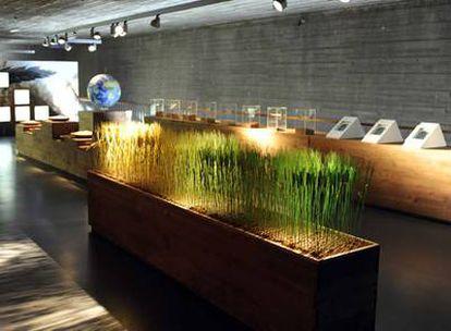 En las salas del Museo del Pan de Mayorga (Valladolid) se explica el proceso del alimento, desde el campo de trigo hasta el obrador.
