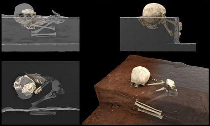 Reconstrucción de los restos de Panga ya Saidi y la posición del cadáver del niño.