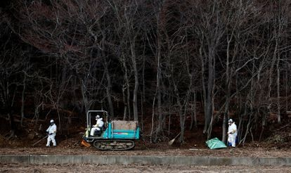Un grupo de operarios trabaja en las labores de descontaminación en un bosque en los alrededores de la central de Fukushima (Japón) en febrero de 2015.