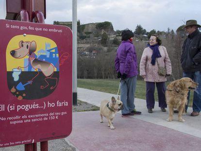 Vecinos de la Seu paseando sus perros