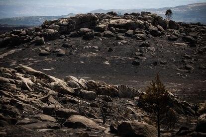 Vista de la aldea de Arzoa, asolada por el fuego los dos últimos días.