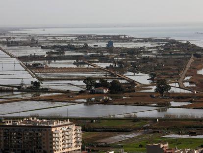 La bahía de los Alfaques (Montsià) con los estragos del temporal