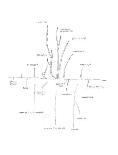 Inspiración física. Ilustración de David Byrne para su libro 'Arboretum'