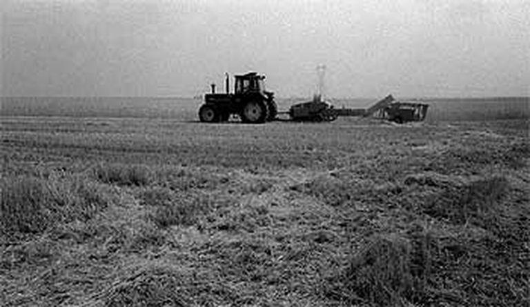 Un tractor arrastra otro tipo de maquinaria en un campo de cereales.   / RAÚL CANCIO