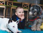 Niño con dos perros en una alfombra.