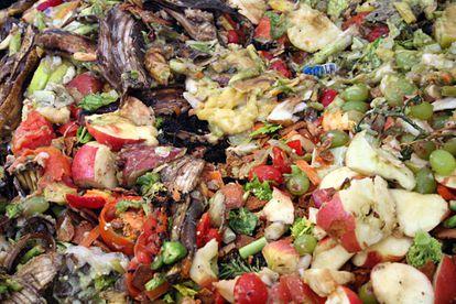 Un tercio de los alimentos producidos para el consumo humano (1.300 toneladas anuales) se pierde o desperdicia.