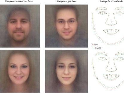 Imagen del estudio, que muestra supuestamente rasgos faciales homosexuales y heterosexuales.