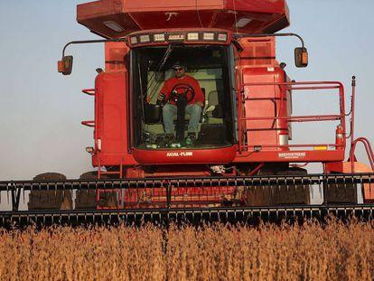 Un hombre trabaja con un tractor en un cultivo de soja en Iowa (EE UU).