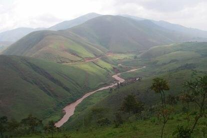 Plantaciones de quinina en la frontera de Ruanda y el Congo.