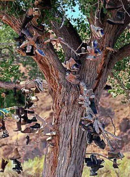 Un árbol lleno de zapatos, en Nevada, Estados Unidos.