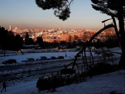 Una rama caída tras el paso de la fuerte nevada del temporal Filomena, en el Parque de San Isidro de Madrid.