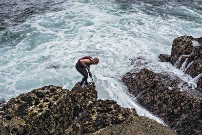 El percebeiro Domingo Méndez entre las rocas.