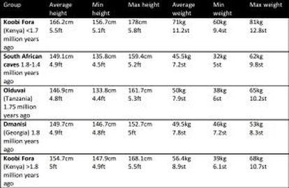 La tabla muestra la altura y peso máximo, mínimo y medio de los primeros humanos.