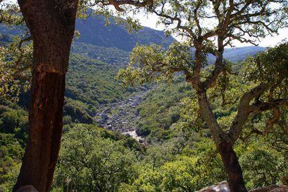 Parque Natural de los Alcornocales.