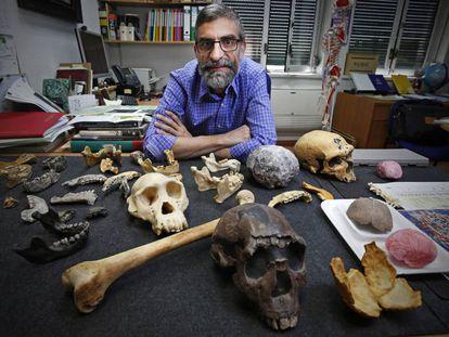 Antonio Rosas, en su despacho en el Museo Nacional de Ciencias Naturales, en Madrid