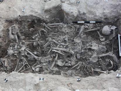 Los cruzados hallados en Sidón tenían marcas de una muerte violenta.