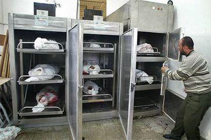 Los cuerpos de ocho palestinos, siete de los cuales murieron en el ataque israelí de ayer, yacen en la morgue de Beit Lahiya.