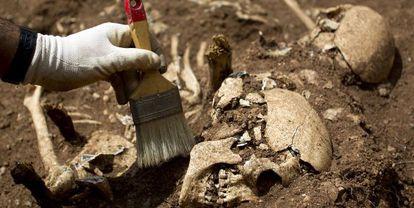 Exhumación de una fosa común en el cementerio de Santo Toribio de Teba (Málaga) en mayo de 2012.