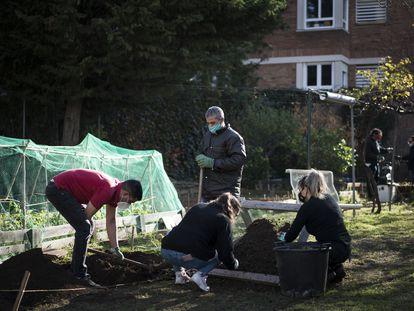 Usuario del Centro de Atención y Seguimiento (CAS) a las drogodependencias de Sarria trabajan en el  huerto para curar sus adicciones.