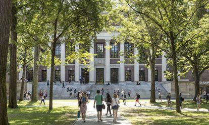Estudiantes y turistas pasean por el campus de la Universidad de Harvard.