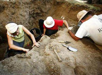 Trabajos de exhumación de cadáveres de represaliados durante la Guerra Civil en Ames, en septiembre de 2007.