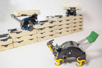 Robots termita creados en el mismo laboratorio que el 'kilobot'.