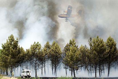 Un hidroavión descarga sobre una zona repoblada con pinos y alcanzada por un incendio en el municipio ourensano de Baños de Molgas.