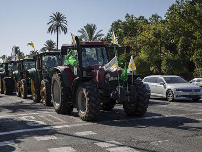 Agricultores y ganaderos de Andalucía se manifiestan para que se rectifique la propuesta de plan estratégico de la PAC en las calles de Sevilla.