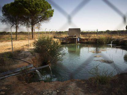 Una balsa de agua obtenida de un pozo ilegal, en 2013
