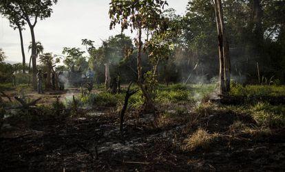 Terrenos destruidos de la comunidad campesina Guayaqui Cua, en Paraguay.