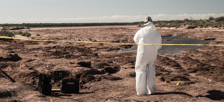 Un equipo forense, en una fosa en Sinaloa.