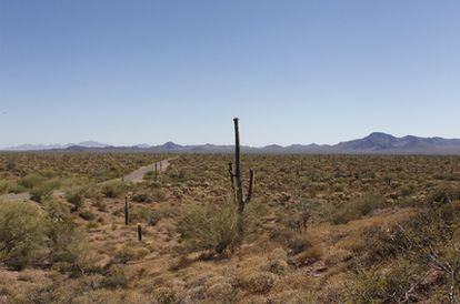 El desierto de Arizona.
