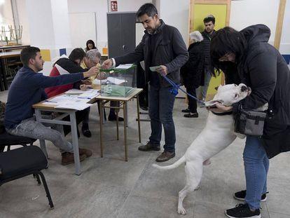 Una pareja, acompañada por un perro, votan en un colegio electoral de Sevilla.
